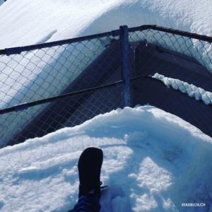 Nikes im Schnee